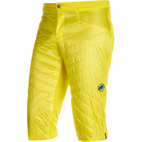 Mammut Aenergy IN Shorts Men blazing